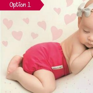 Love or return cloth nappies scheme option 1