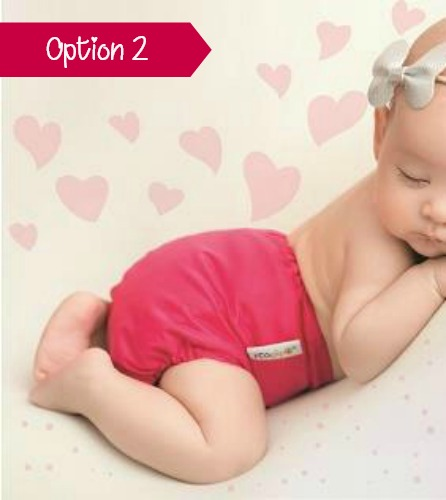 Love or return cloth nappies scheme option 2
